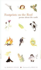FOOTPRINTS ON THE ROOF: Poems About the Earth