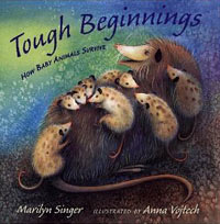 TOUGH BEGINNINGS: How Baby Animals Survive