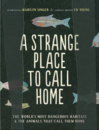 A Strange Place to Call Home